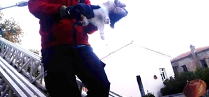Havran'da kedi kurtarma operasyonu