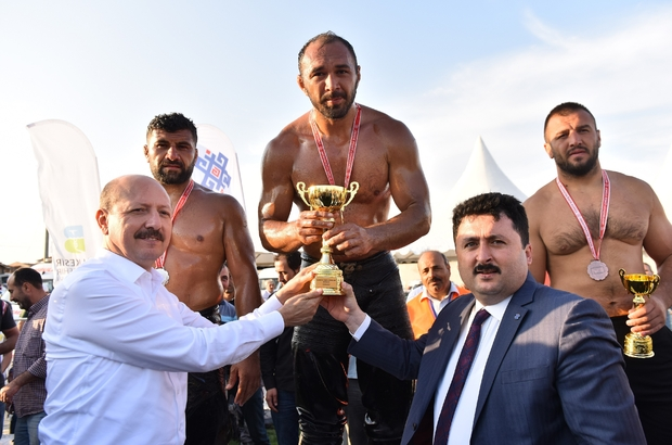 Altıeylül güreşlerinde Ali Gürbüz başpehlivan oldu 20 yıl sonra Altıeylül'de kol bağladılar