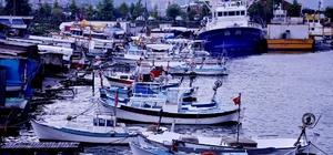 """Arslan: """"Karadeniz alarm veriyor, balık av sezonu Kasım'da kapanabilir"""" Piraziz Su ürünleri Kooperatifi Başkanı Hamdi Arslan: """"Çok karamsar konuşmak istemiyorum ama Kasım-Aralık ayında bu sene için balıkçılık bitebilir"""" """"Balığın en ucuz olması gereken dönemde tezgahtaki en ucuz balık 20 lira"""""""