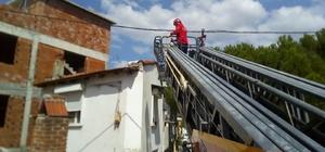 Havran'da çatıda mahsur kalan köpeği itfaiye kurtardı