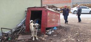 Kamera da köpek de hırsızlara engel olamadı Hırsızlar bu kez manevi değeri bulunan 40 yıllık tartı kefesini çaldı