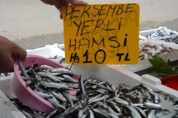 Denizden hamsi fışkırdı, fiyatlar 10 liraya düştü Ordu'da avlanan yerli hamsinin kilogramı 10 liradan satışa sunuluyor