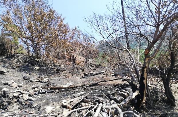 Manavgat'ta evleri yanan aileye, Antalya Valiliğinden destek