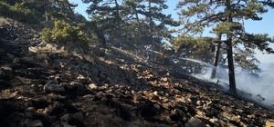 Eskişehir'de orman yangını Ekipler alana giremeyince hava desteği istendi