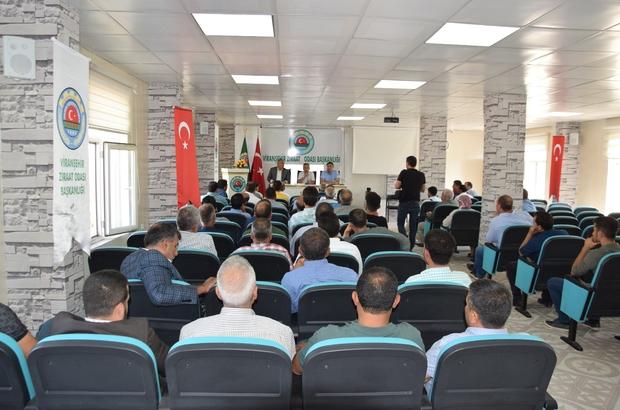 Yemyeşil Urfa Projesi için Viranşehir'de toplantı düzenlendi