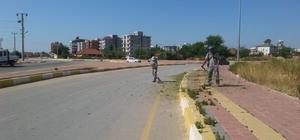 Kepez Belediyesi temiz bir çevre için işbaşında