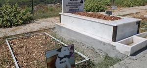 Mezitli Belediyesi Hayvan Mezarlığı büyük ilgi görüyor