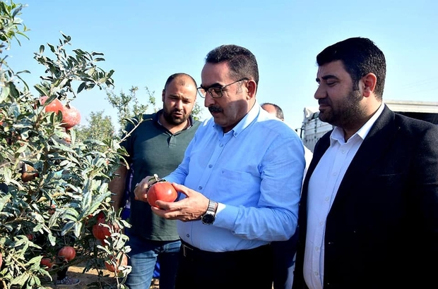 "AK Parti'li Doğru: ""Pamuk üreticisi primden memnun kalacak"""