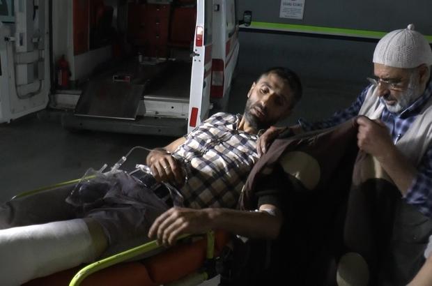 Ayı saldırısına uğrayan yaşlı adam hayatını kaybetti