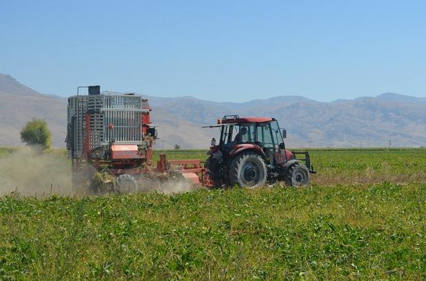 Pancar Çiftçisi verilen fiyatlardan memnun Pancar hasadına başlayan çiftçiler, belirlenen taban fiyat ve verilen primden memnun olduklarını söyledi