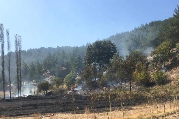 Orman Bölge Müdürlüğü ekiplerinin erken müdahalesi muhtemel bir faciayı önledi