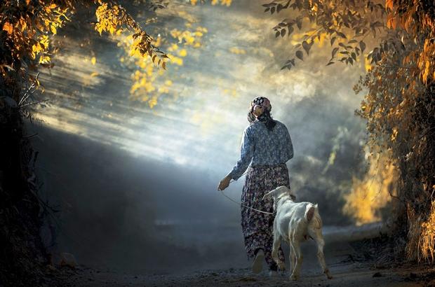 """Fotoğraf Yarışmasının ödül töreni 3 Ekim'de Muğla Büyükşehir Belediyesi tarafından düzenlenen """"Muğla'da Yaşam"""" konulu fotoğraf yarışmasının ödül töreni ve fotoğrafların sergilenmesi 3 Ekim tarihinde gerçekleştirilecek."""