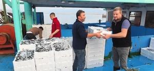 """Hamsi'nin kilosu 15 liraya geriledi Bandırma Körfezi'nde balık coşkusu Işık: """"Lambalı avcılık olmazsa Türkiye'nin hiçbir yerine balık gitmez"""""""