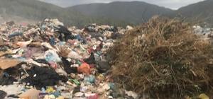 Erdek Belediyesi'nin çöp yasağına uymadığı iddia ediliyor