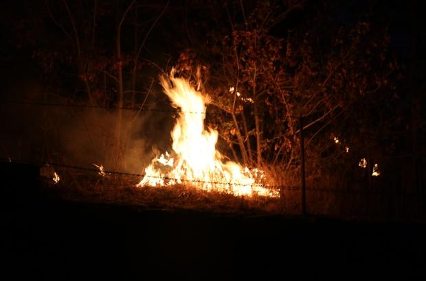 Sivas'ta otluk alanda yangın