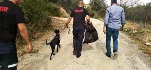 Adem Bozkurt 5 gündür kayıp Adana'nın Kozan ilçesinde 5 gün önce evden ayrılan Adem Bozkurt iz takip köpeğiyle aranıyor