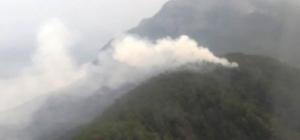 Aydın ve Muğla'da yıldırım 8 ormanına neden oldu