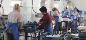 (Özel) Bu fabrikada çalışanların tamamı kadın Devlet desteğiyle kurulan mermer fabrikası, ABD ve Kanada'ya ihracat yapıyor
