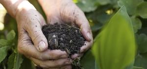 Trabzon'un 2019 yılı toprak verimlilik raporu açıklandı Analizi yapılan tarım topraklarında kireç ve organik madde miktarının yetersiz olduğu görüldü