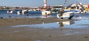 Marmaraereğlisi'nde deniz 15 metre çekildi