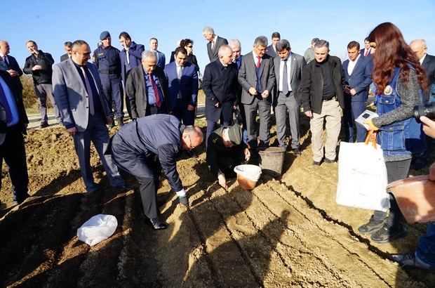 """Kastamonu'da 11 Kasım'da 200 bin fidan toprakla buluşacak Sönmezoğlu, """"Hem iç piyasaya fidan veriyoruz, hem de yurtdışına fidan ihraç ediyoruz"""""""