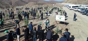 Sivas'ta 49 noktada 511 bin 279 fidan dikildi Tarım ve Orman Bakanlığı'nca 'Geleceğe Nefes Ol' sloganıyla başlatılan kampanya kapsamında Sivas'ta 511 bin 279 fidan toprakla buluşturuldu
