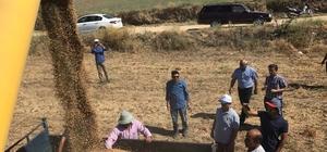Tüm ülkede arttı, Ege Bölgesi'nde azaldı Türkiye'de nohut üretimi bir önceki yıla göre yüzde 34 artarken, Ege Bölgesi'nde yüzde 13,9 azaldı