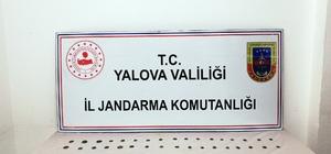 Yalova'da tarihi eser operasyonu 105 sikke ele geçirildi