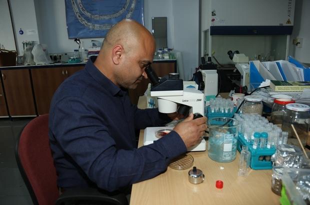 ADÜ Öğretim Üyesi Uluslararası Mikrobiyoloji dergisinin editörlüğüne seçildi