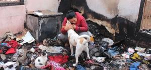 Evleri yanınca 15 kedi ve 2 köpeğiyle evsiz kaldı Kanser hastalığını yeni atlatan kadın, babası ve kardeşi, 15 kedi ve 2 köpeğiyle evsiz kaldılar
