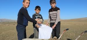 Öğrencilerin ara tatilde kışlık tezek mesaisi Sivas'ın Altınyayla ilçesinde ara tatili fırsat bilen öğrenciler, hem tatil yapıyor hem de kışlık tezek toplayarak aile ekonomisine katkı sağlıyor