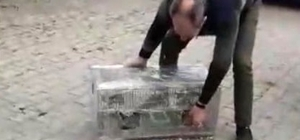 Su deposunda 37 saka kuşu ele geçirildi Kuşlar için 26 bin 598 TL ceza kesildi