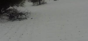 Diyarbakır'a yılın ilk karı yağdı