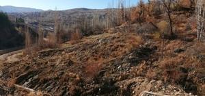Karaman'da yaşanan heyelan korkuttu