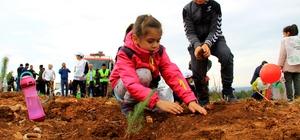 Muğla ve Aydın'da 2019'da 1 milyon fidan toprakla buluştu Muğla Orman Bölge Müdürlüğü'nün sorumluluk alanı Aydın ve Muğla illerinde 2019 yılı içinde bin 694 hektar alana 1 milyon 52 bin 567 adet değişik türde fidan dikildi