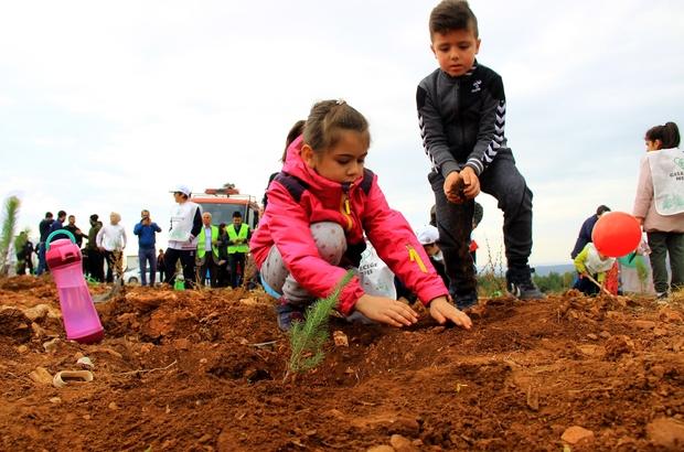 Aydın ve Muğla'da 2019'da 1 milyon fidan toprakla buluştu