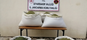 Diyarbakır'da 364 kilo esrar ele geçirildi