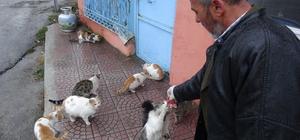 """Kediler her gün onun yolunu gözlüyor Aksaray'ın Ihlara beldesinde bir esnaf hayvanlara olan şefkatiyle """"İnsanlık ölmedi' dedirtiyor"""
