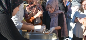Eynesil'de 'Hamsi Şenliği' düzenlendi