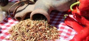 Aydın'da tıbbi ve aromatik bitki arşivi oluşturuluyor