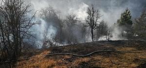 Devrekani'de yangında 80 dekarlık alan zarar gördü