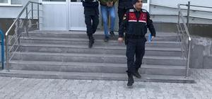 İl Jandarma Komutanlığı'ndan terör operasyonu: 1 gözaltı