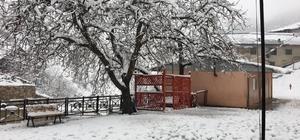Adana'nın Feke ilçesinde kar yolları kapattı