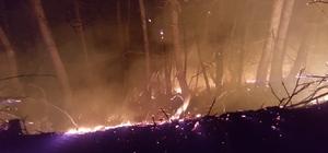 Ordu'daki orman yangınlarına müdahale sürüyor Çatalpınar ilçesinde 4 farklı bölgede çıkan orman yangını ekipler tarafından kontrol altına alındı