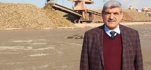 Malatya Şeker Fabrikasında 345 bin ton pancar işlendi Fabrikada şu ana kadar 45 bin ton şeker üretildi