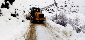Kar nedeniyle 205 mahalle yolu ulaşıma kapandı