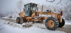 Denizli'de karla mücadele çalışmaları Büyükşehir ekipleri karla mücadelede alarma durumuna geçti