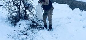 Yaban hayvanlarına Jandarma şefkatı
