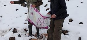 Muş DKMP yaban hayvanları için doğaya yem bırakıldı