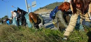 Söke'de karayolu kavşağında temizliğe dikkat çektiler